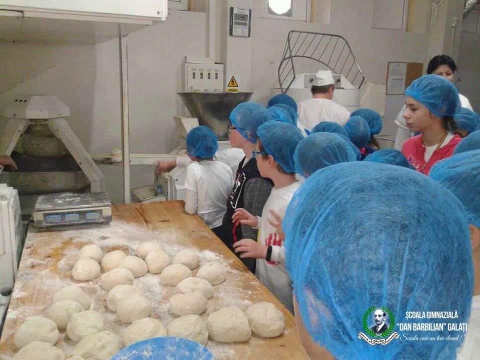 fabrica de paine dan barbilian